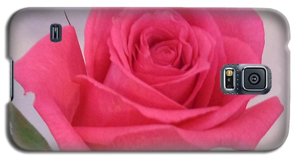 Single Deep Pink Rose Galaxy S5 Case