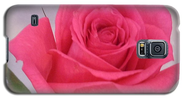 Single Deep Pink Rose Galaxy S5 Case