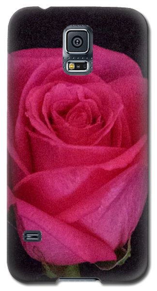Deep Pink Rose On Black Galaxy S5 Case