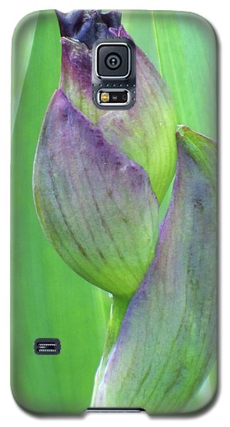 Deep Purple Promise Galaxy S5 Case