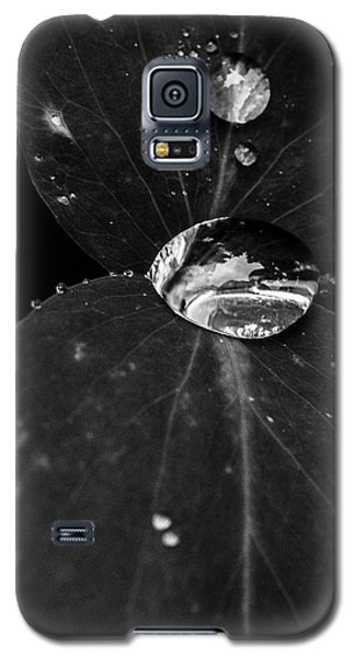 Galaxy S5 Case featuring the photograph Deep Refraction Between Leaves by Darcy Michaelchuk