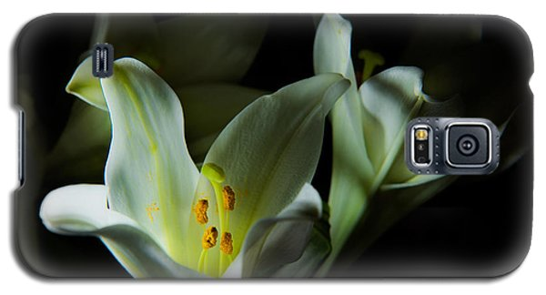 Deep White Lily Galaxy S5 Case