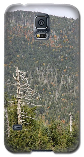 Deeper Into Forest Galaxy S5 Case