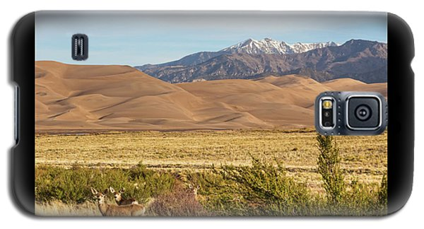 Galaxy S5 Case featuring the photograph Deer And The Colorado Sand Dunes by James BO Insogna