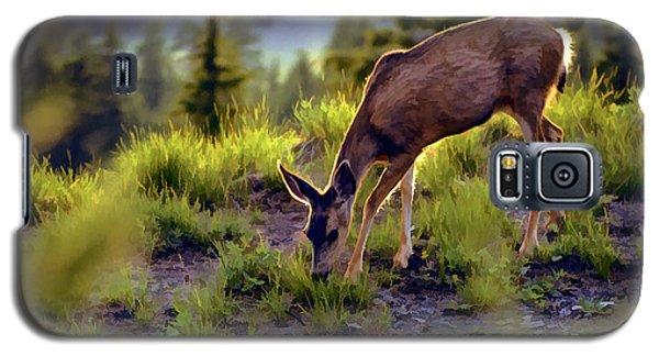 Deer At Crater Lake, Oregon Galaxy S5 Case