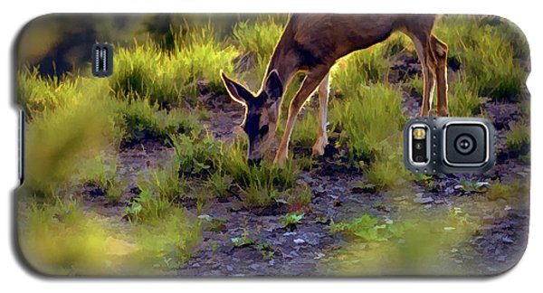 Galaxy S5 Case featuring the photograph Deer At Crater Lake, Oregon by John A Rodriguez