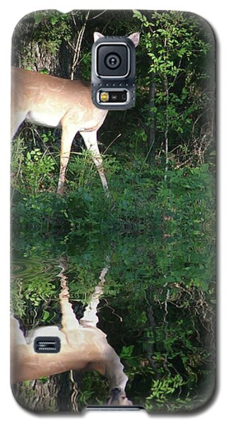 Galaxy S5 Case featuring the photograph Deer At Dusk by Rick Friedle