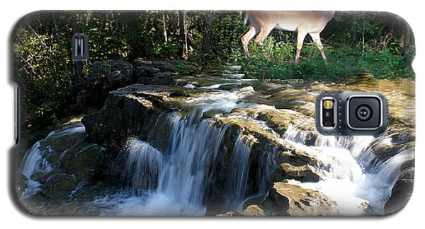 Galaxy S5 Case featuring the photograph Deer At The Falls by Rick Friedle