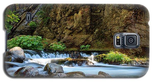 Deer Creek Galaxy S5 Case