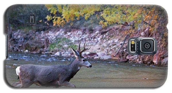 Deer Crossing River Galaxy S5 Case