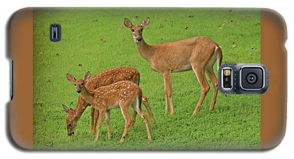 Deer Family Galaxy S5 Case