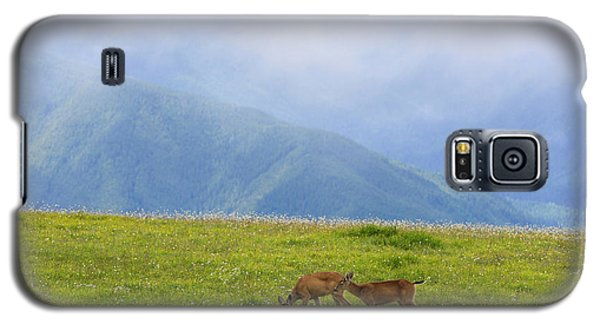 Deer In Browse Galaxy S5 Case
