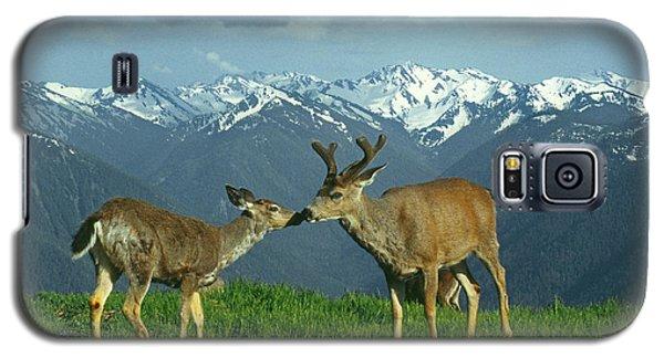 Ma-181-deer In Love  Galaxy S5 Case
