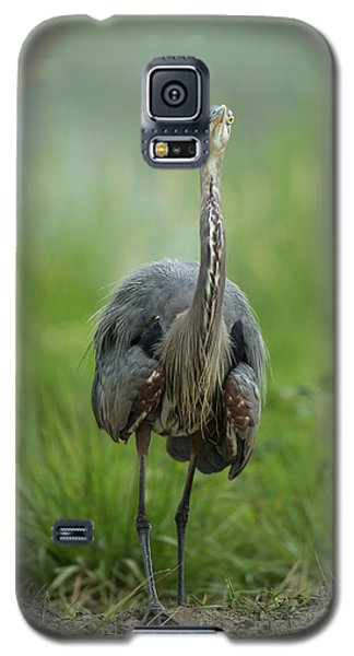 Galaxy S5 Case featuring the photograph Defensive Great Blue Heron by Angie Vogel