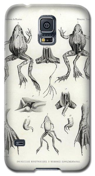 Deformed Frogs - Historic Galaxy S5 Case