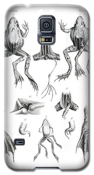 Deformed Frogs Galaxy S5 Case by Joseph Huet