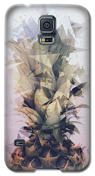 Defragmented Pineapple Galaxy S5 Case