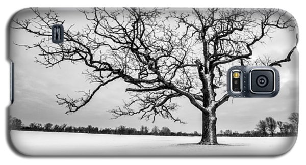 Galaxy S5 Case featuring the photograph Delaware Park Winter Oak - Square by Chris Bordeleau