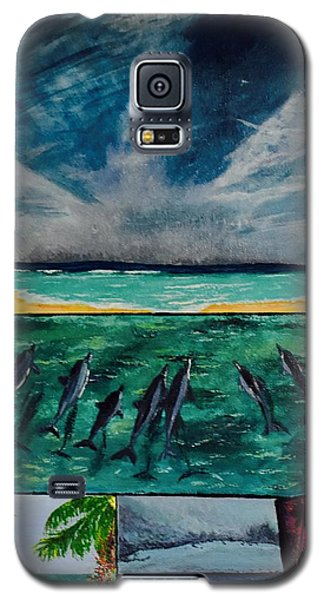 Delfin Galaxy S5 Case