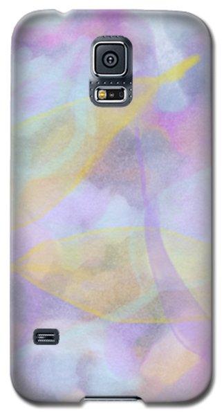 Delicacy Galaxy S5 Case