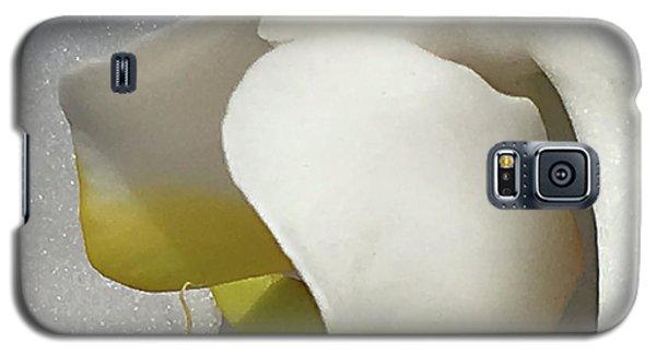 Delicate As Egg Yolk Galaxy S5 Case by Sherry Hallemeier