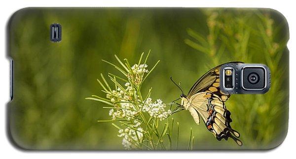 Delicate Beauty Galaxy S5 Case