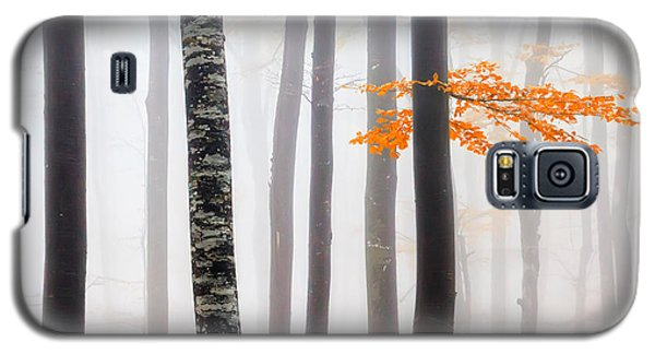 Delicate Forest Galaxy S5 Case