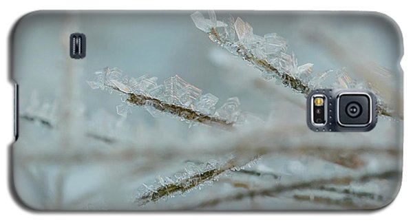 Delicate Morning Frost  Galaxy S5 Case