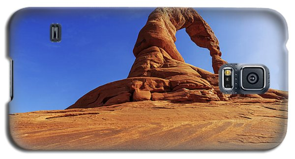 Delicate Perspective Galaxy S5 Case by Chad Dutson
