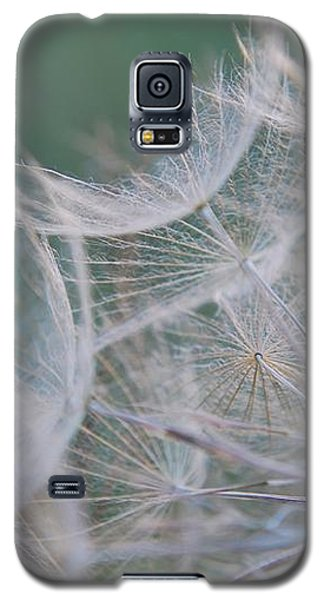 Delicate Seeds Galaxy S5 Case