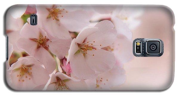 Delicate Spring Blooms Galaxy S5 Case