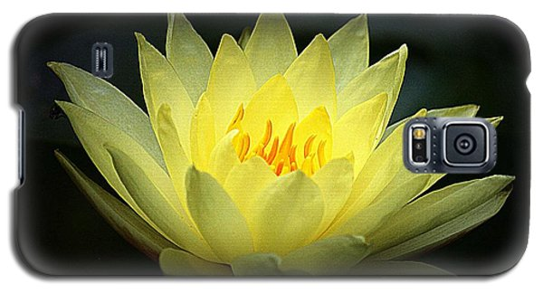 Delicate Water Lily Galaxy S5 Case