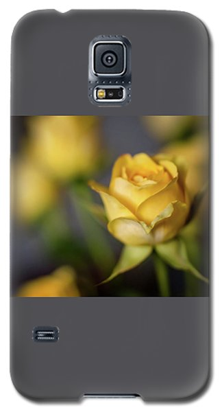 Galaxy S5 Case featuring the photograph Delicate Yellow Rose  by Terry DeLuco