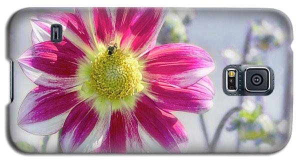 Delicious Dahlia Galaxy S5 Case