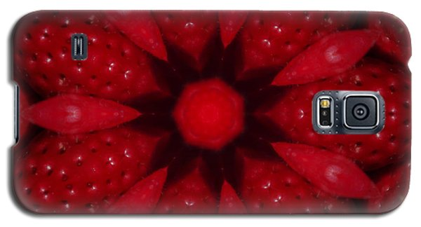 Delicious Strawberries Kaleidoscope Galaxy S5 Case by Robyn Stacey