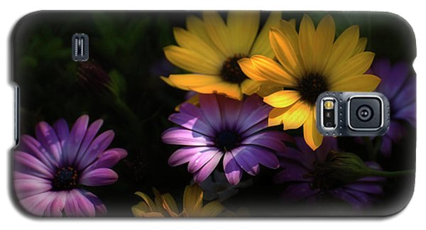 Delightful Daisies Galaxy S5 Case