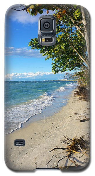 Delnor Wiggins Pass State Park Galaxy S5 Case by Robb Stan
