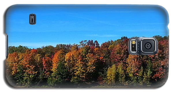 Galaxy S5 Case featuring the photograph Delta Lake State Park Foliage by Diane E Berry