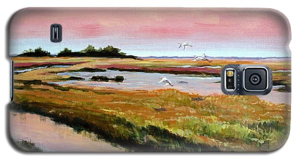 Galaxy S5 Case featuring the painting Delta Sunrise by Suzanne McKee