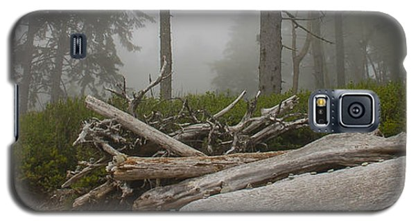 Ruby Beach In A Fog Galaxy S5 Case