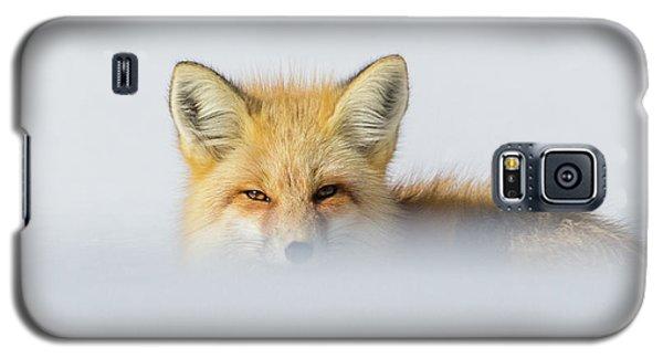 Den Watch II Galaxy S5 Case