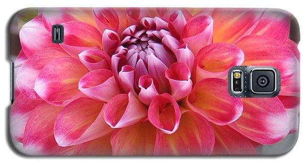 Denali Dahlia Galaxy S5 Case