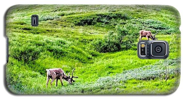 Denali National Park Caribou Galaxy S5 Case