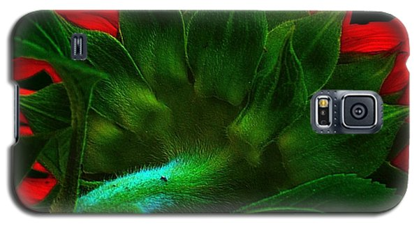 Galaxy S5 Case featuring the photograph Derriere by Elfriede Fulda