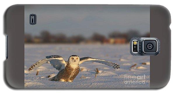 Des Ailes D'ange. Galaxy S5 Case