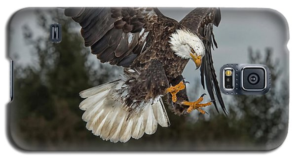 Descending Eagle Galaxy S5 Case by CR  Courson