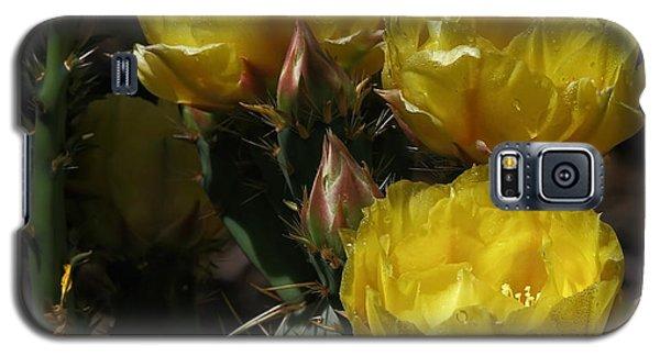 Desert Blooming Galaxy S5 Case