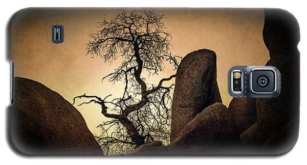 Desert Bonsai II Galaxy S5 Case