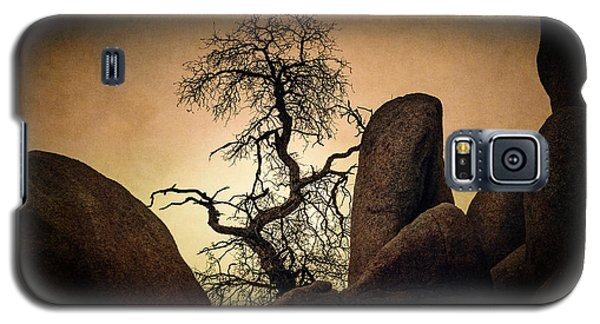 Desert Bonsai II Galaxy S5 Case