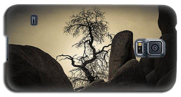 Desert Bonsai Galaxy S5 Case